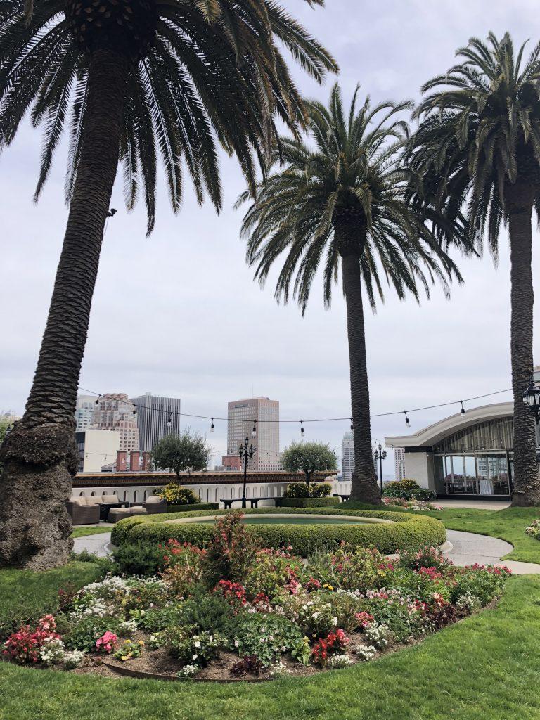Fairmont San Francisco Rooftop
